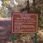 Entrance to the Goleta Butterfly Grove