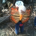 A child eager to see the monarchs.
